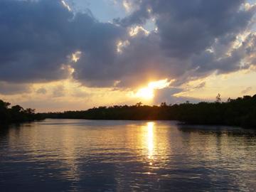 Cancun Lagoon Fishing