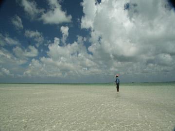 Isla Blanca Panga